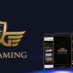 드림게이밍-DreamGaming